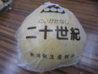 Josai_2009_shiinoki_022