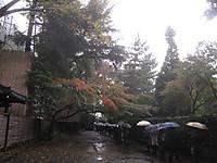 20121123_josai_rekishi_bunngaku_0_2
